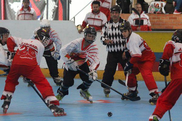 Hockey Nal interligas