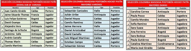 seleccion hockey patin